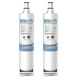 Kenmore 46-9010, 46-9902, 46-9908, 4396510, 439650, 4396918, EDR5RXD1 Compatible Water Filter Replacement by Bristi (2-Pack)