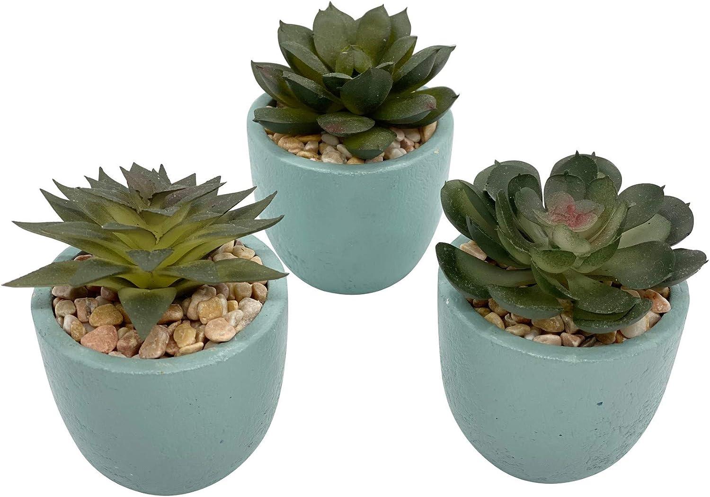 Artificial Mini Potted Succulent Plant Decor (Set of 3) | Green & Cyan Pot | Fake Succulent Plant | Office Decor, Bathroom Decor, Farmhouse Decor, Kitchen Decor | Faux decore | Home Decor Clearance