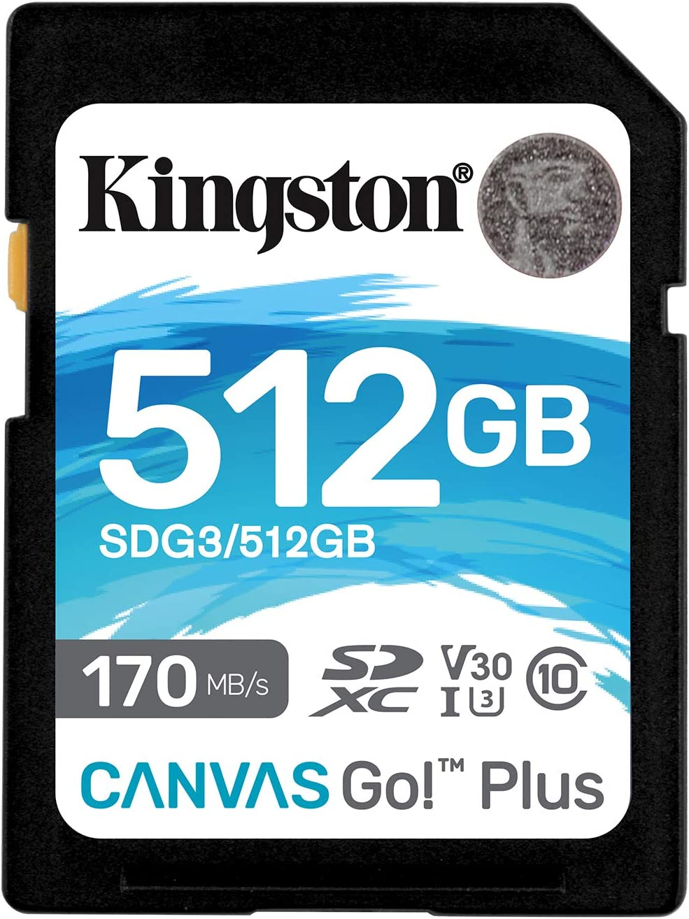 128GB SDXC Canvas Go Plus 170R C10 UHS-I U3 V30 Kingston SDG3//128GB SD Card