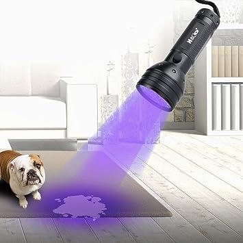 Sumbay detector de linterna negra Pet olor UV 395 nm: Amazon.es: Productos para mascotas