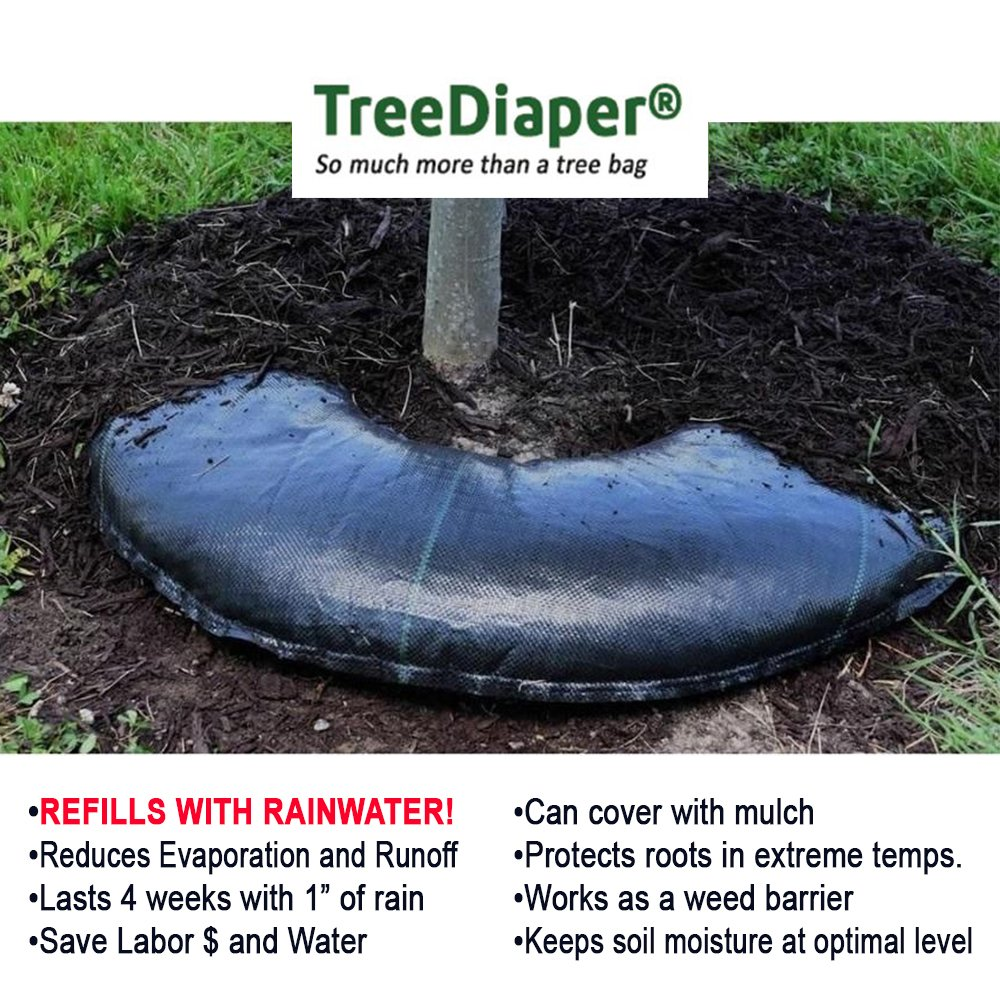 Smart Tree Watering Bag - AUTO REFILLS WITH RAIN and Slow Releases As Plant Needs - New Water Absorption Slow Release Technology Prevents Over and Under Watering - Large Tree Diaper 36'' Ring For Trees