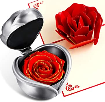 Preserved Flower Eternal Rose Unwithered Rose Valentine/'s Day Gift to Girlfriend