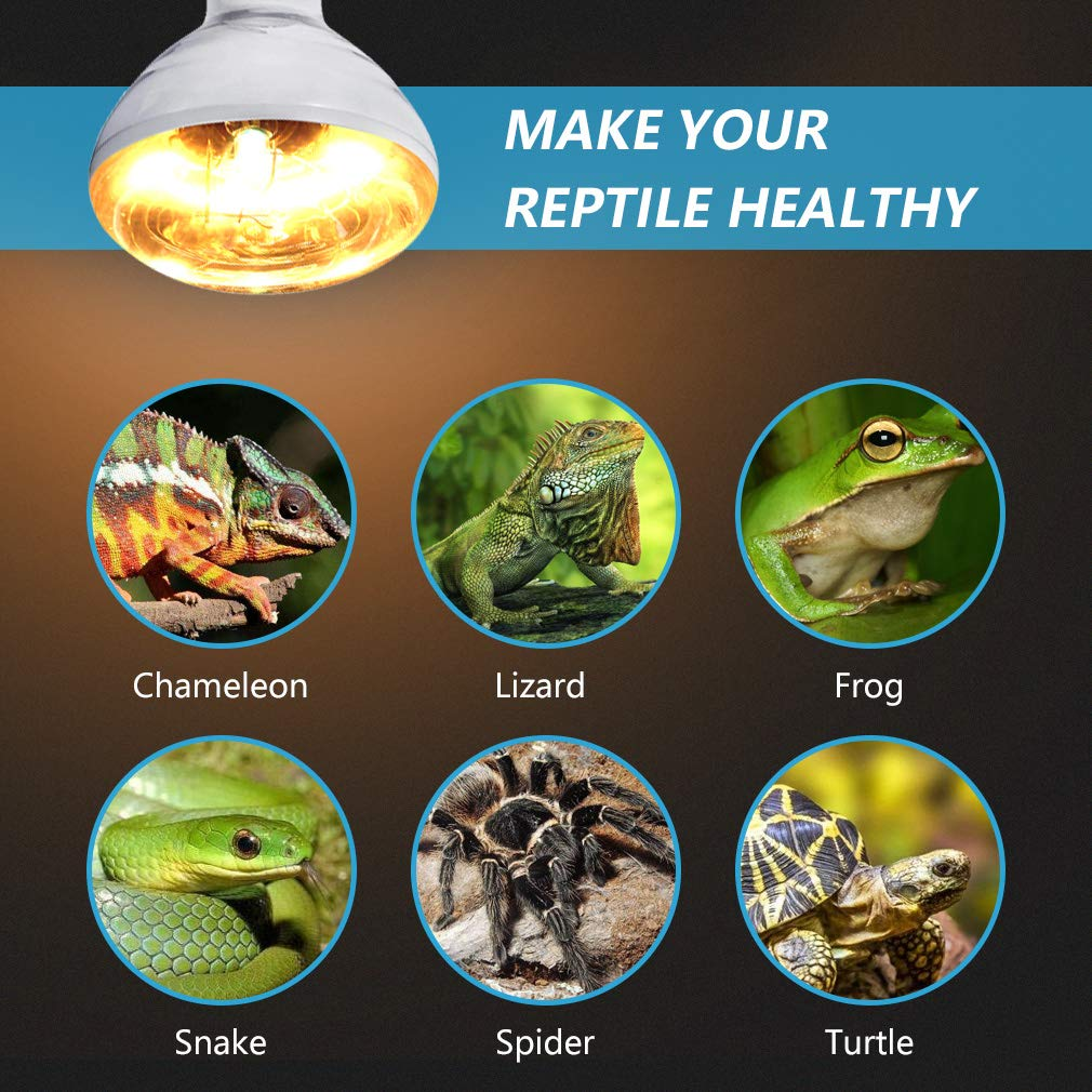 Amphibian and Birds AMZCOOL UVB and UVA Reptile Heat Lamp Bulb Truly Sun-Like Bright Heat for Reptiles