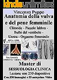 Anatomia della vulva e del pene femminile Clitoride Piccole labbra Bulbi del vestibolo Uretra Orgasmo femminile: Master Sessuologia Clinica Lezione con ... anteprime video (Sessualità Vol. 4)