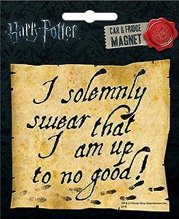 Amazon.com: Harry Potter Fridge Magnet Set: Kitchen & Dining