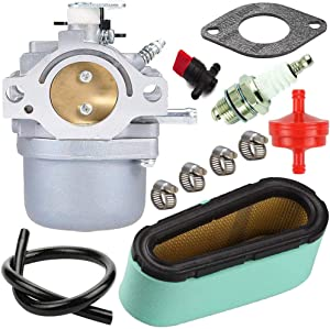 TOPEMAI 799728 Carburetor for Briggs & Stratton 28R707 28V707 28B707 498027 495706 494502 with 496894S Air Filter