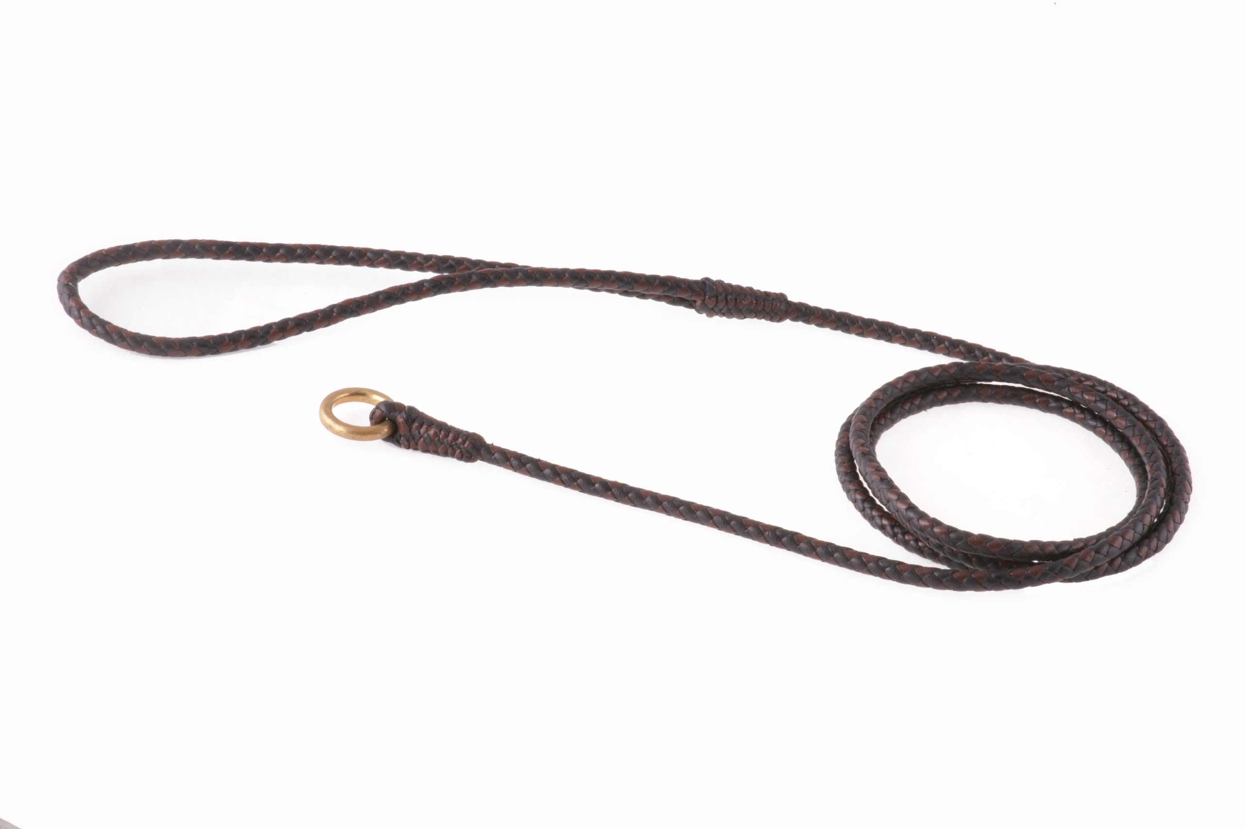 Alvalley Braided Slip Lead for Dogs 4ft - Thin by Alvalley LLC