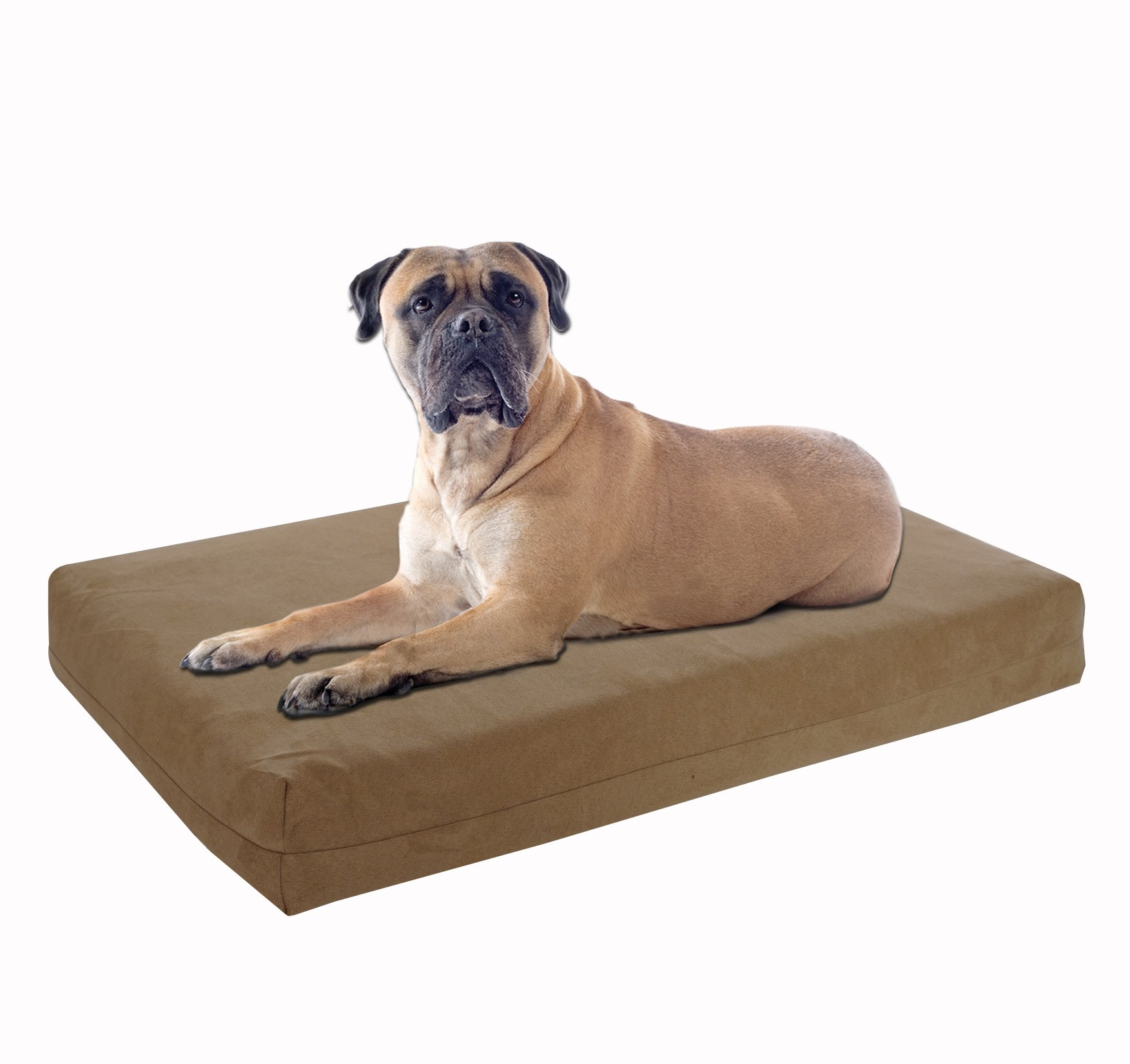 Pet Support Systems Washable Orthopedic Memory Foam Dog Bed, Large, 46-Inch x 28-Inch x 4-Inch, Khaki / Tan (Plush Microsuede)