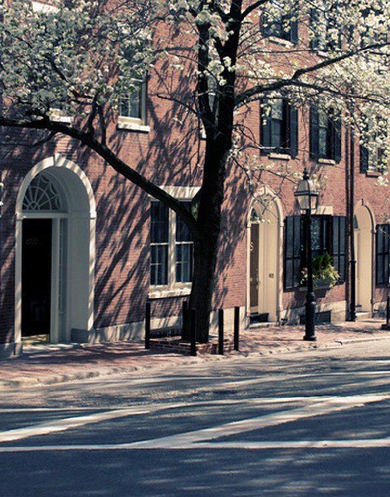 Street Viewツリー写真の背景幕写真小道具Studio背景5 x 7ft   B01GJ0YCV2