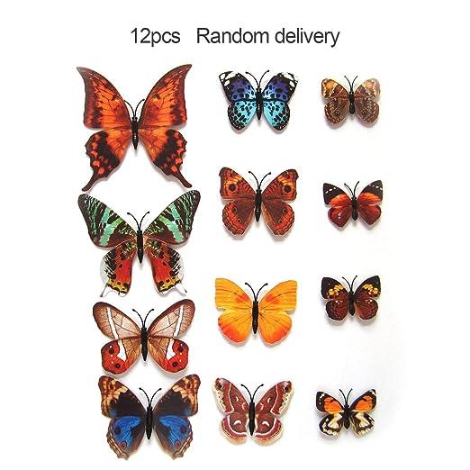 ClookYeed - Juego de 12 imanes 3D de PVC con Mariposas para la ...