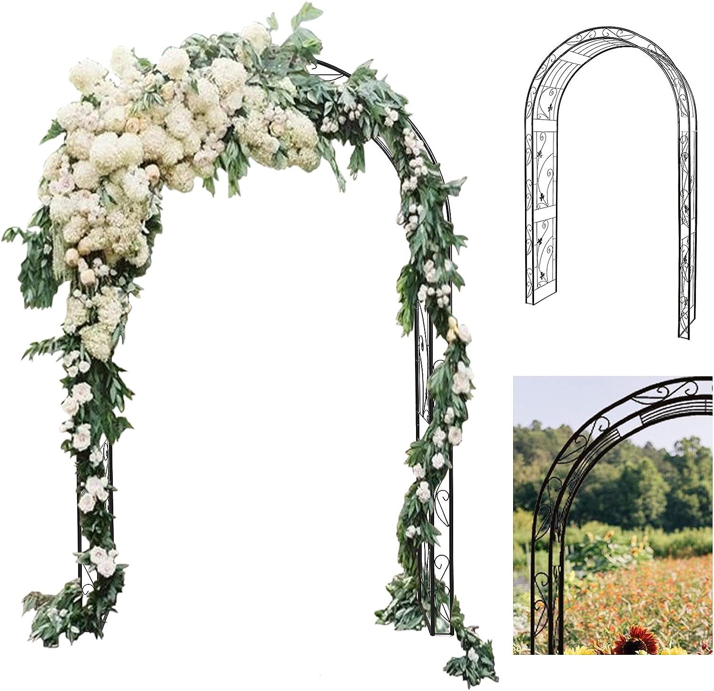 Befrases Metal Outdoor & Indoor Garden or Wedding Arch Arbor for Wedding Bridal Party Elegant Decorations & Various Climbing Plant, Outdoor Garden Lawn Backyard (Black 1PC)
