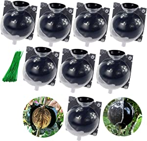 IDOXE 8PC Plant Root Growing Box Root Booster for Fast Plant Reproduction Pod Plant Root Device Assisted Cutting Rooting High Pressure Propagation Box (Transparent, Black) Small
