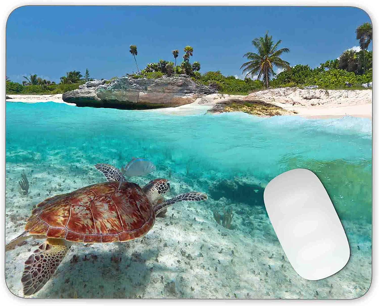 Timing/&weng Caribbean Sea Scenery with Green Turtle Mouse pad Gaming Mouse pad Mousepad Nonslip Rubber Backing