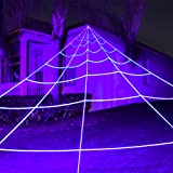 Giant Outdoor Yard Spider Web - Perfect Decor Kit For Cute Or Scary Halloween Decorations & Props