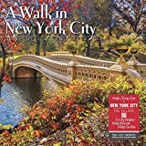 A Walk in New York City 2019 Wall Calendar