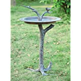 SPI Home 33303 Bird and Twig Sundial/Birdbath