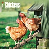 Chickens 2018 12 x 12 Inch Monthly Square Wall Calendar, Domestic Farm Animals (Multilingual Edition)
