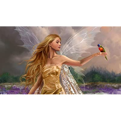 Adult Puzzle Classic Jigsaw Puzzle 1000 Pieces DIY Fairy Girl Wings Flowers Field Bird Wooden Puzzle Festival Gift Wall Decoration Mural Home Art 75x50cm: Toys & Games
