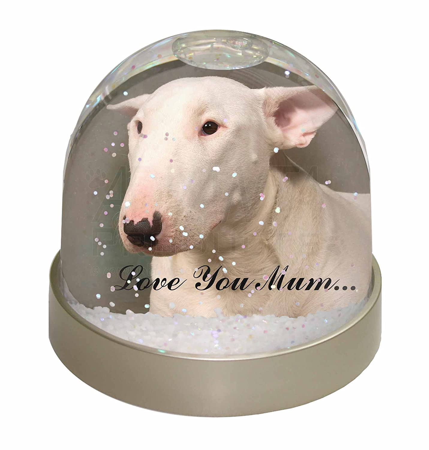 Advanta White Bull Terrier 'Love You Mum' Photo Snow Globe Waterball Stocking Filler Gift, Multi-Colour, 9.2 x 9.2 x 8 cm Advanta Products AD-BUT1lymGL
