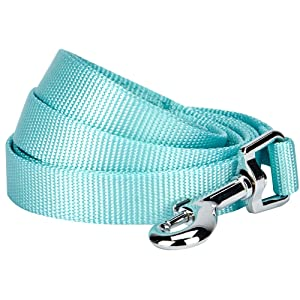 Blueberry Pet 19 Colors Durable Classic Dog Leash