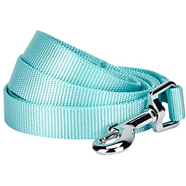 Blueberry Pet Classic Solid Color Dog Leash, 19 Colors, Matching Collar & Harness Available Separately