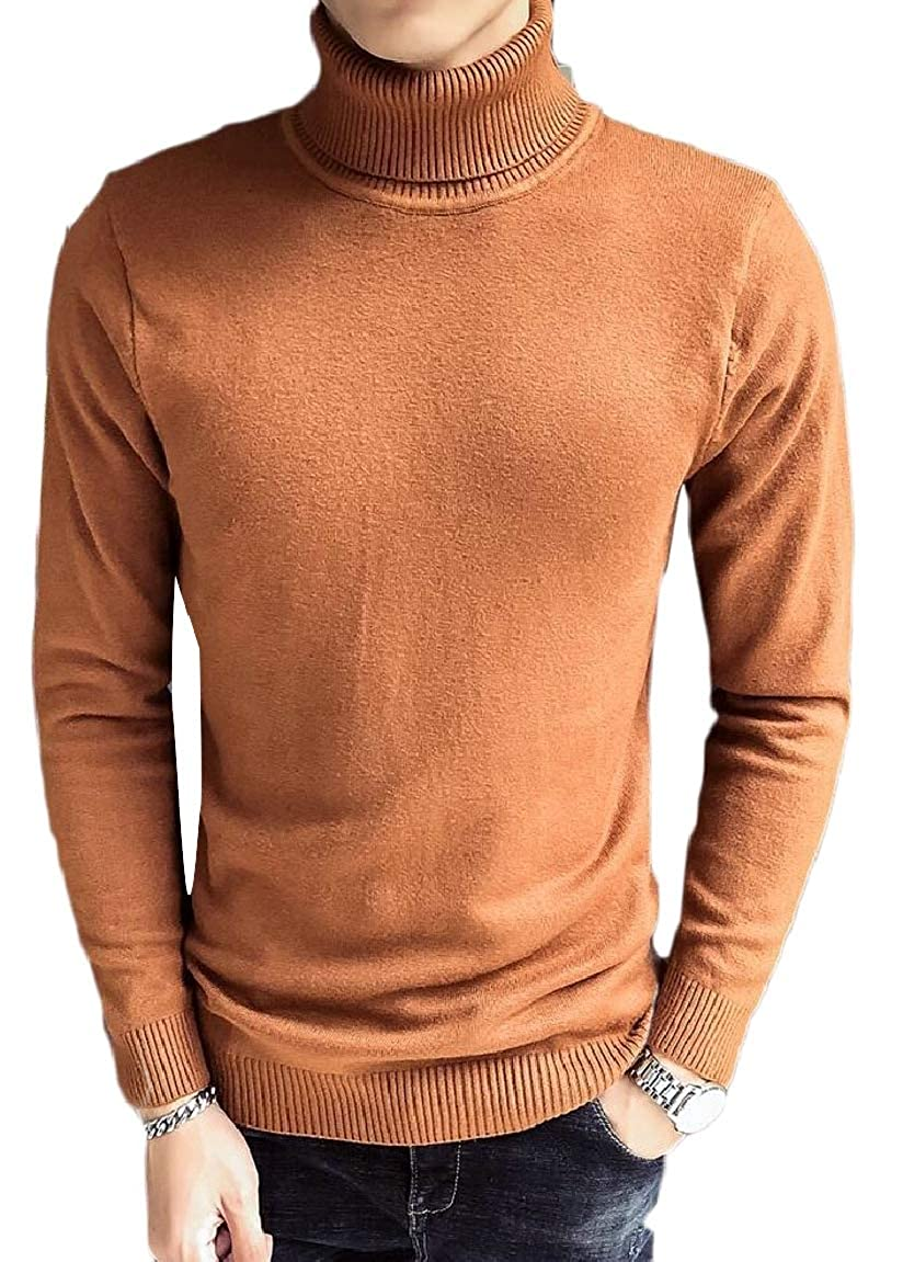 HTOOHTOOH Mens Turtleneck Slim Fit Warm Winter Solid Knitted Pullover Sweaters