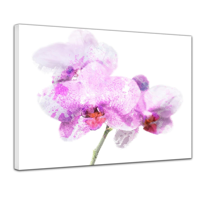 Bilderdepot24 Cuadros en Lienzo Lámina Reproducción Acuarela púrpura orquídea 50 x 40 cm - Listo tensa, Directamente Desde el Fabricante: Amazon.es: Hogar