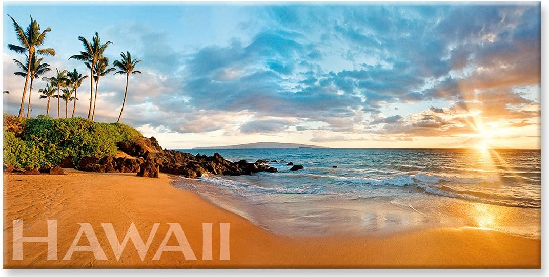 Panoramic Hawaiian Art Collectible Refrigerator Magnet - Wailea Dreams by Michael & Monica Sweet