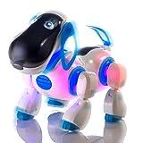 Durherm Smart Storytelling Robot Dog, Sing Dance