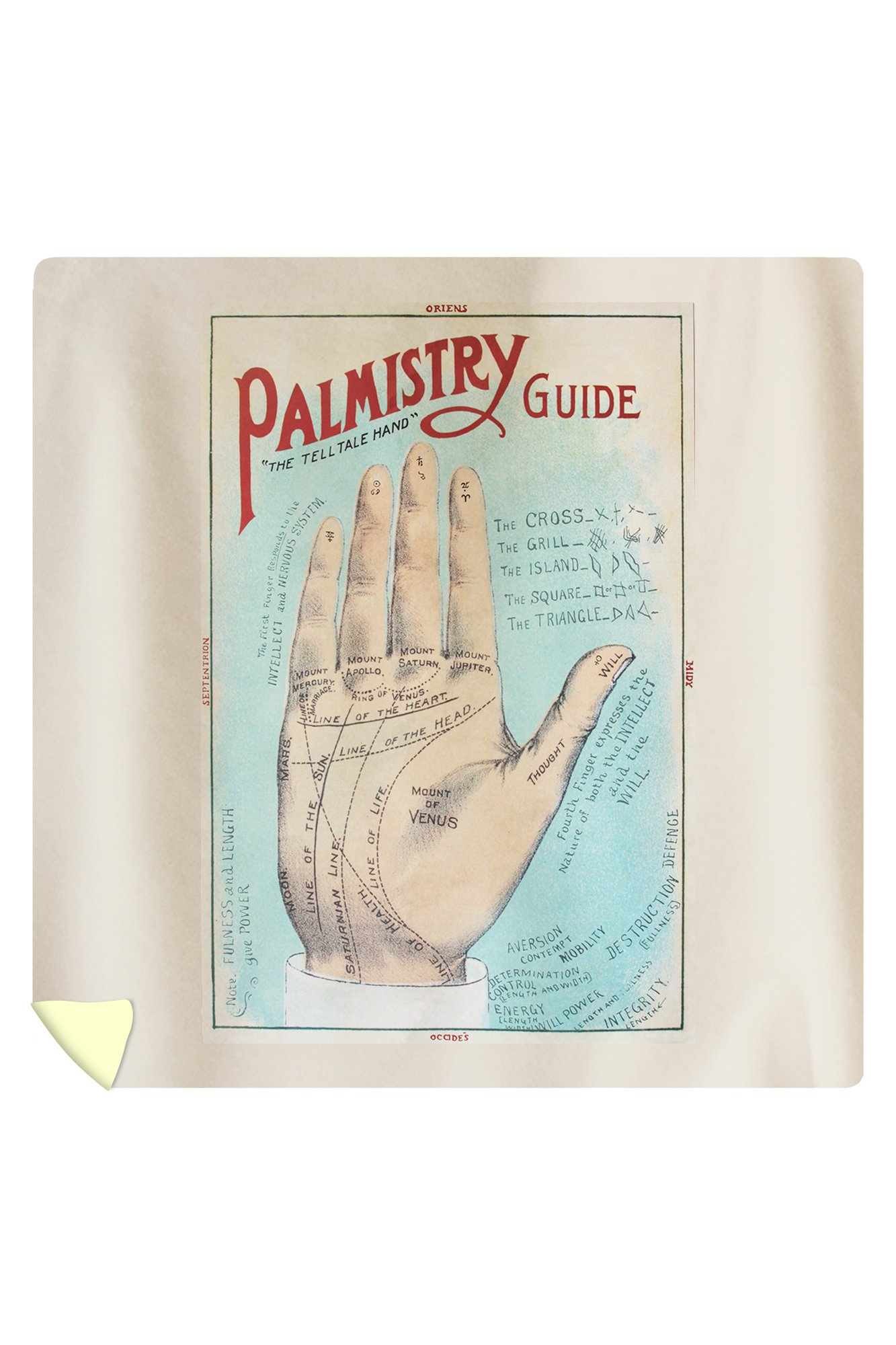 A Picture of Good Health - Vintage Palmistry Chart Lithograph (88x88 Queen Microfiber Duvet Cover)
