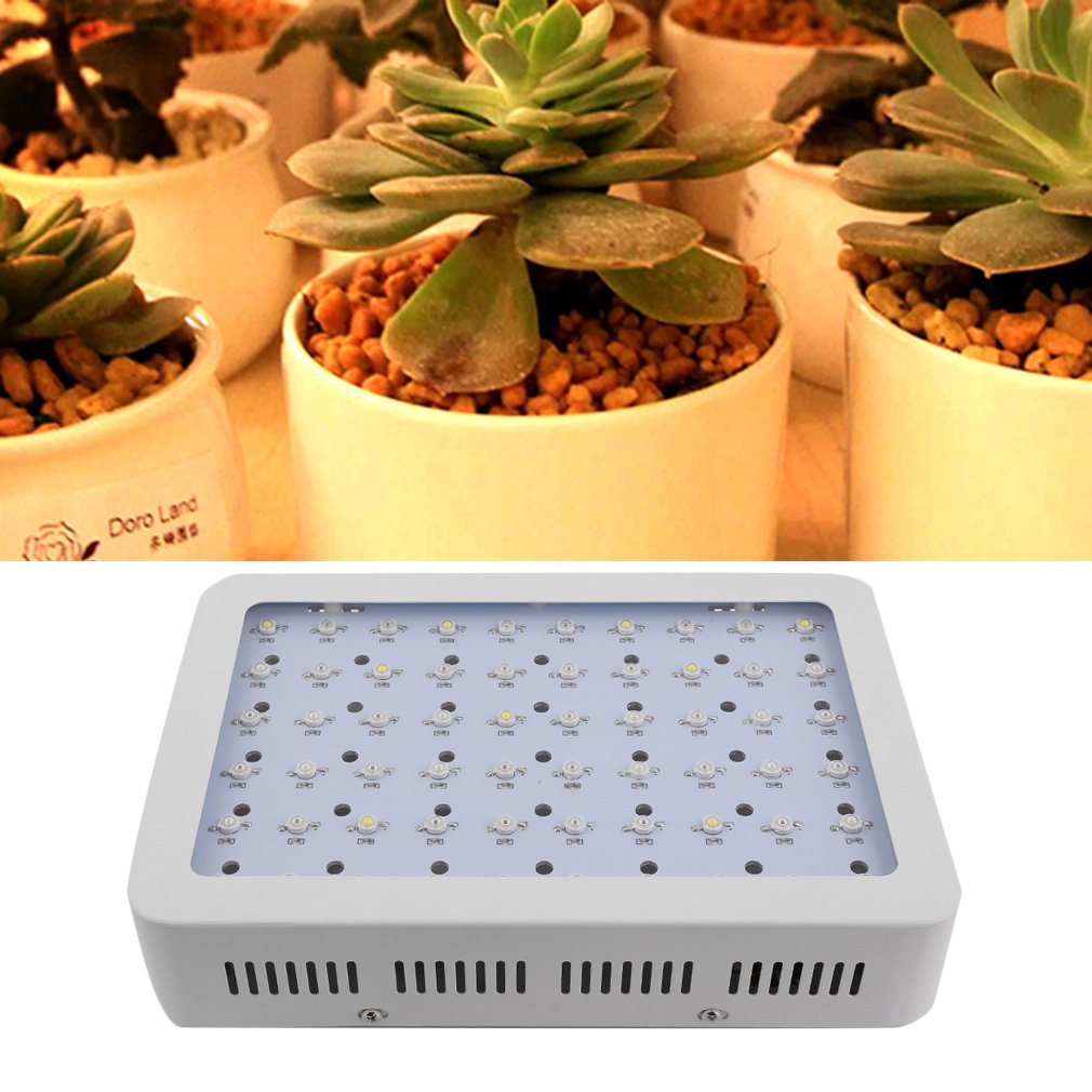 300W LED Grow Light Dual Chips Full Spectrum Grow Lamp for Indoor Plants (300W) Lckyming