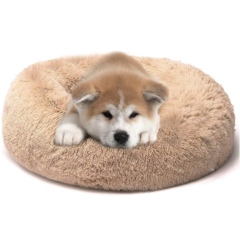 PETCUTE Cama para Perros peque/ños medianos Cama para Gatos Grandes coj/ín de Gato Lavable Suaves Cama para Mascotas acogedora