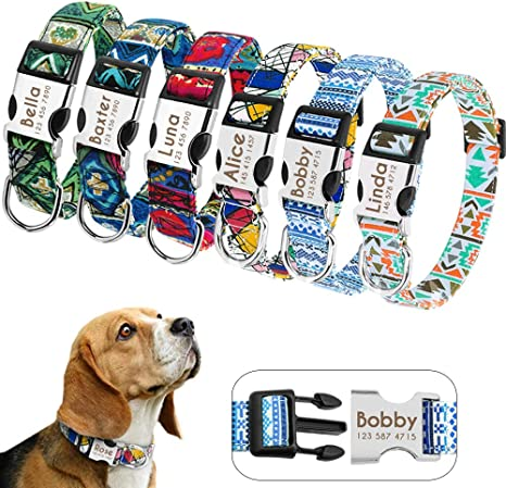 cotton American Money Dog Collar metal hardware adjustable dog collar fun dog collar handmade green and black soft fabric dog collar