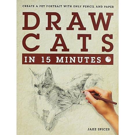 Dibuja gatos en 15 minutos: Amazon.es: Juguetes y juegos