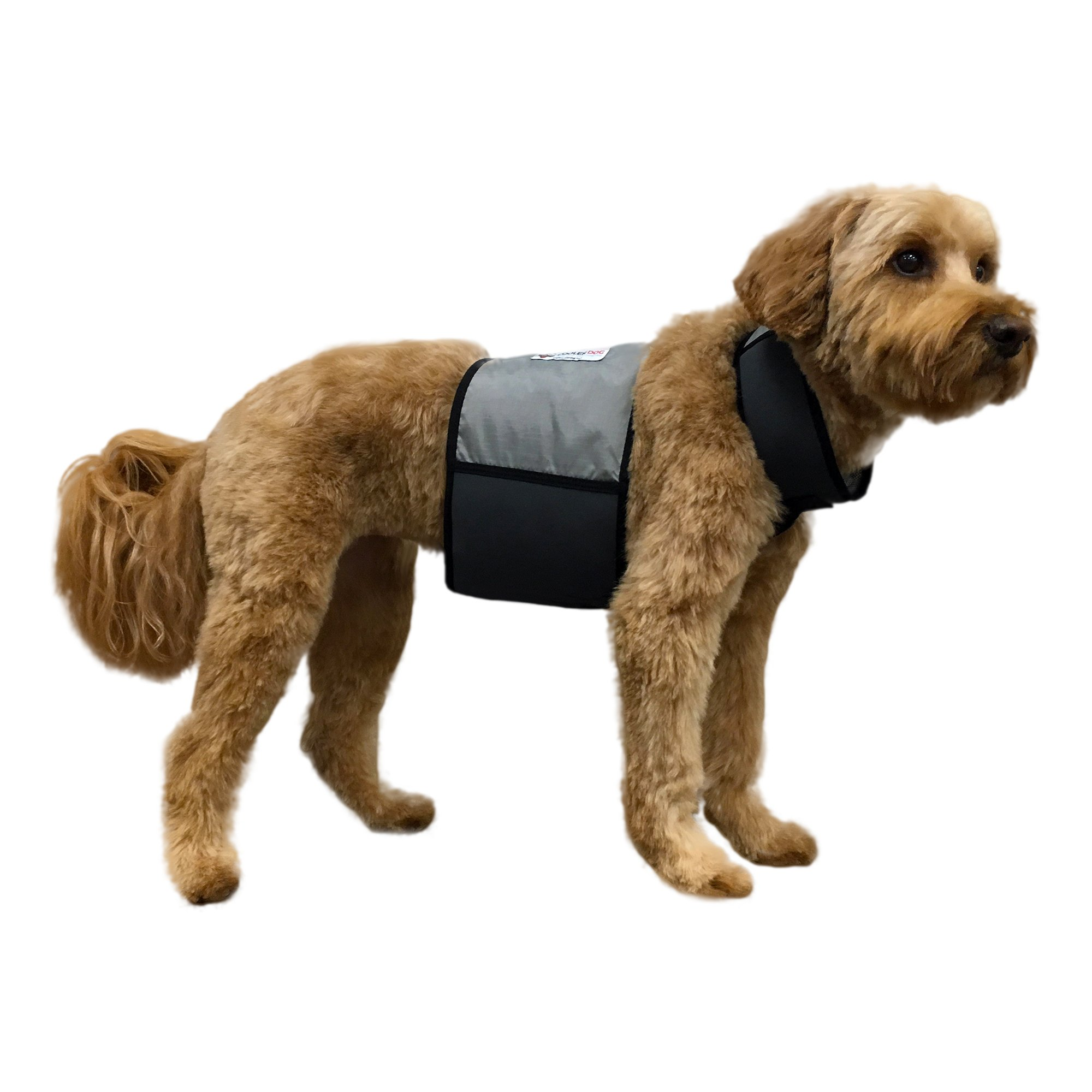 CoolerDog Dog Cooling Vest and Cooling Collar - Ice Vest for Dogs Medium (22'' to 27'' Girth)