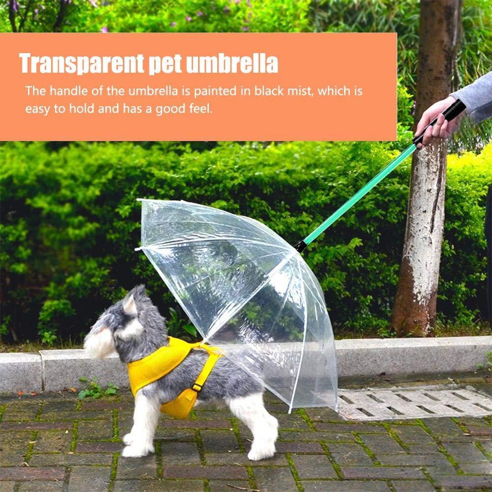 1d1fe1278d97 Amazon.com: DYYTRm Umbrella for Dogs with Leash - Transparent ...