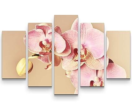 Sin us 74 quadro su tela 160x100cm splendido prato di orchidea rosa