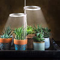 Double Head LED Succulents Grow Light Set- Full Spectrum Plant Growing Lamp with 24H Cycle Auto Timing Switch Adjustable…