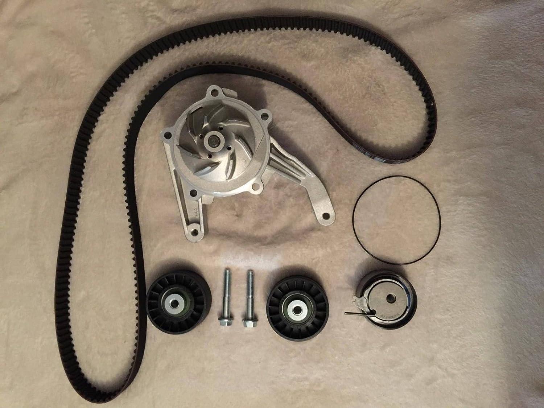 Dayco correa de distribución Kit + bomba de agua 5093911 AB KTB 956 alta calidad: Amazon.es: Coche y moto
