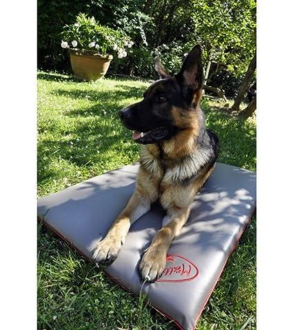 Cojín, caseta, colchón, cama para perro grande - Antipelo, sin olores, antimanchas, desinfectante, impermeable, 110 x 70 x 6 cm.Color: beige y gris.