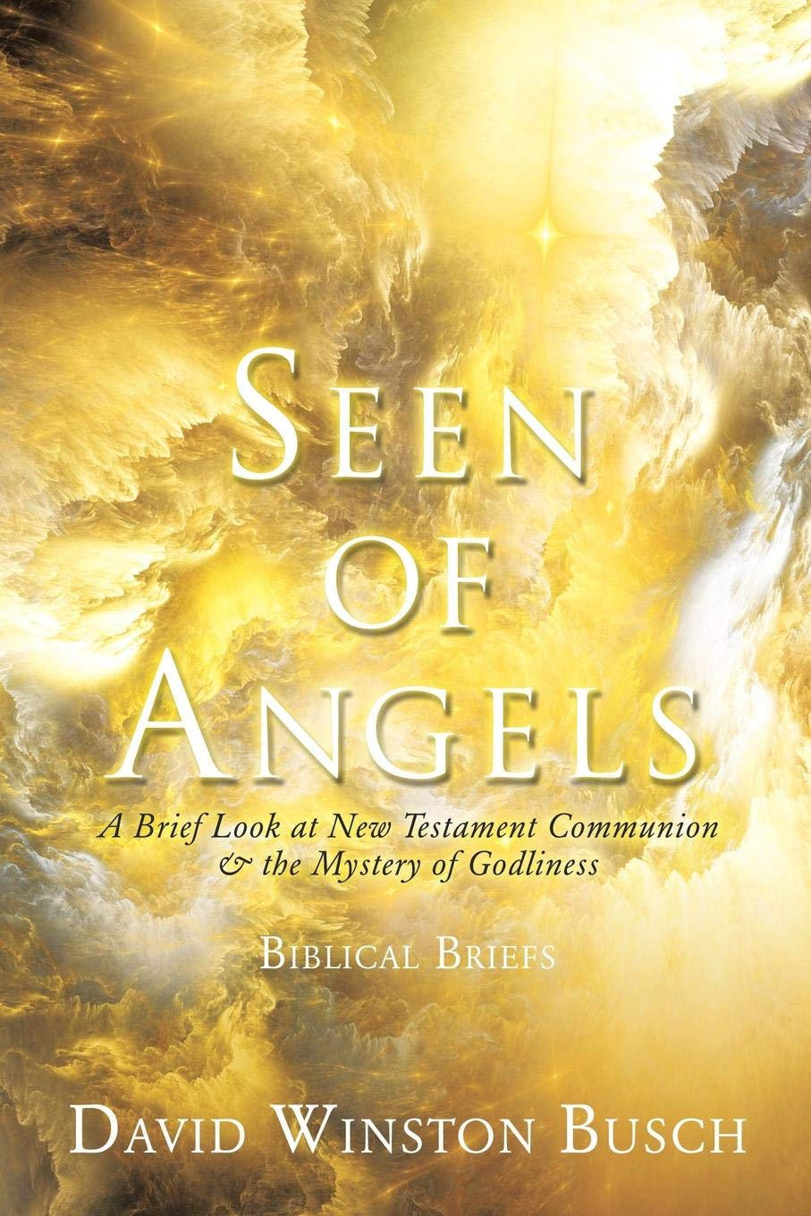 Seen of Angels: A Brief Look at New Testament Communion & the Mystery of Godliness ebook