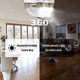 Panoramic Bulb Camera, Hidden White LED Light