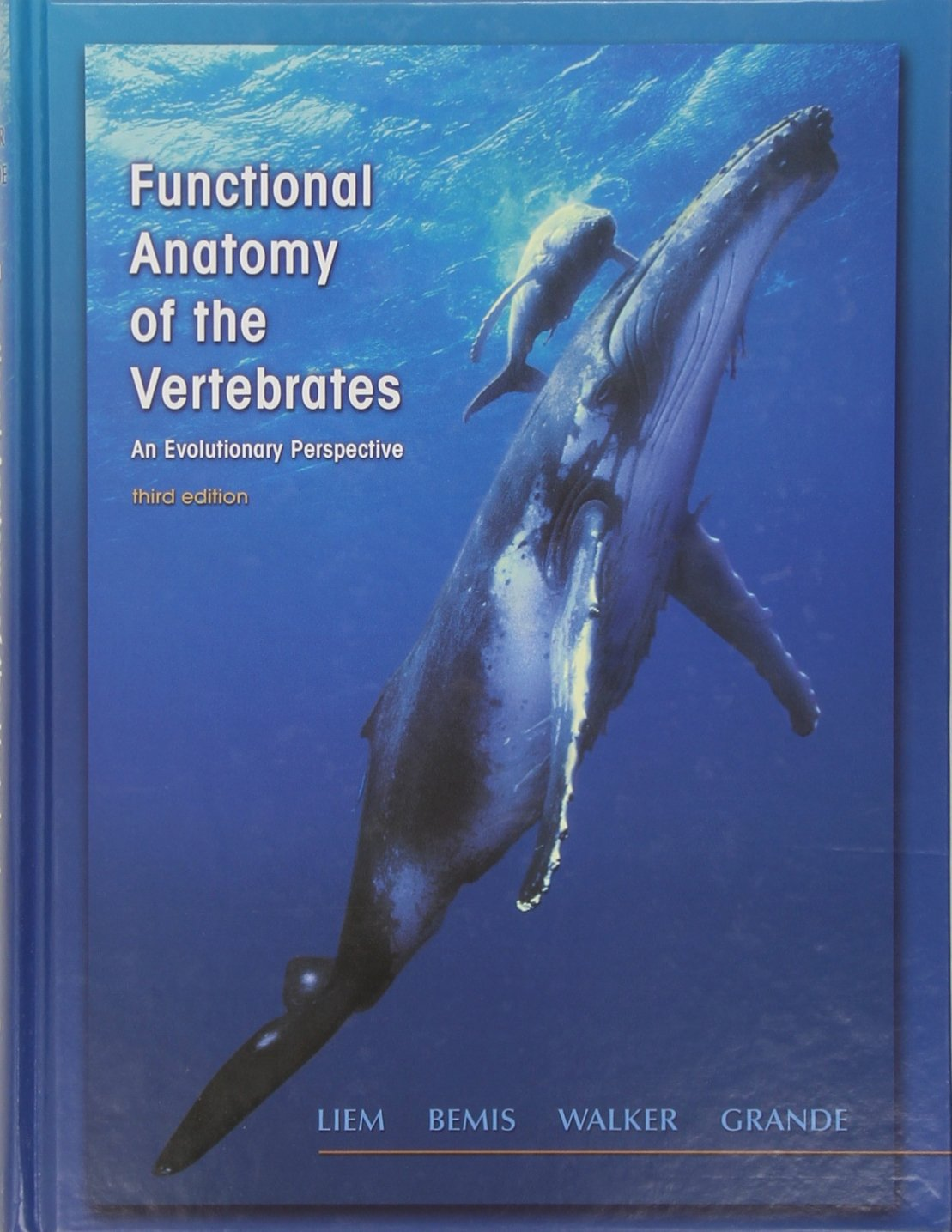 Buy Functional Anatomy Of The Vertebrates An Evolutionary