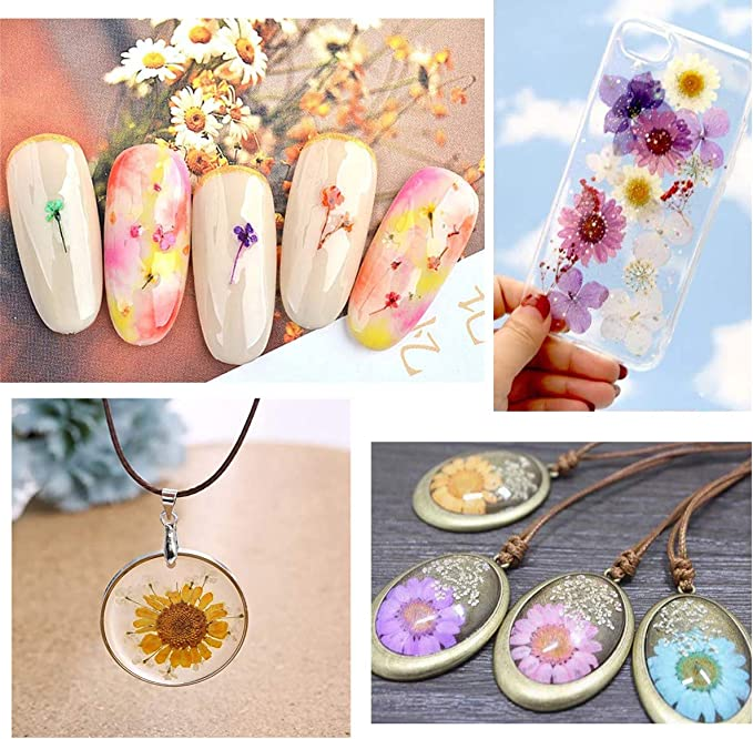 High Quality Real Dried Flower Bloom Yellow from Japan use for making Resin Accessories and Herbarium  AM-922215