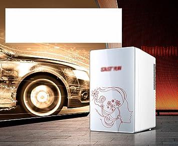 Kühlschrank Im Auto Lagern : Die erste l auto dual use mini auto kühlschrank kleine wohn