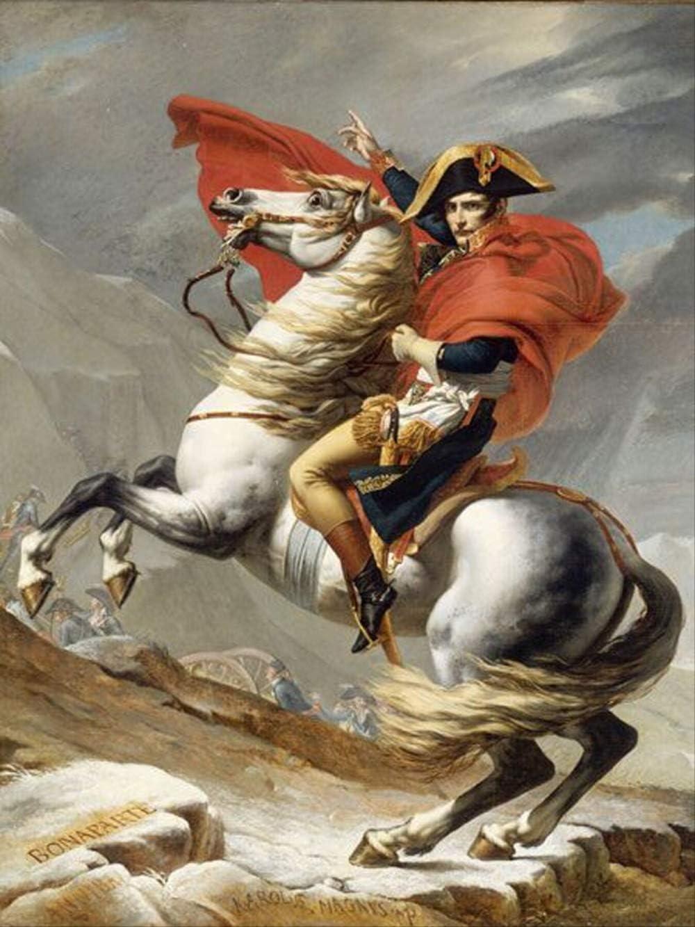 FSGEIV pintura al oleo Pintura al óleo clásica pintada a mano pura Pintura al óleo del caballo de montar a caballo francés Napoleón para la decoración de la pared 24x36