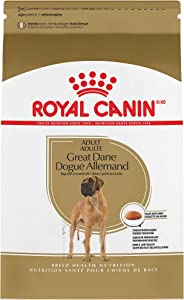Royal Canin Breed Health Nutrition Great Dane Adult Dry Dog Food