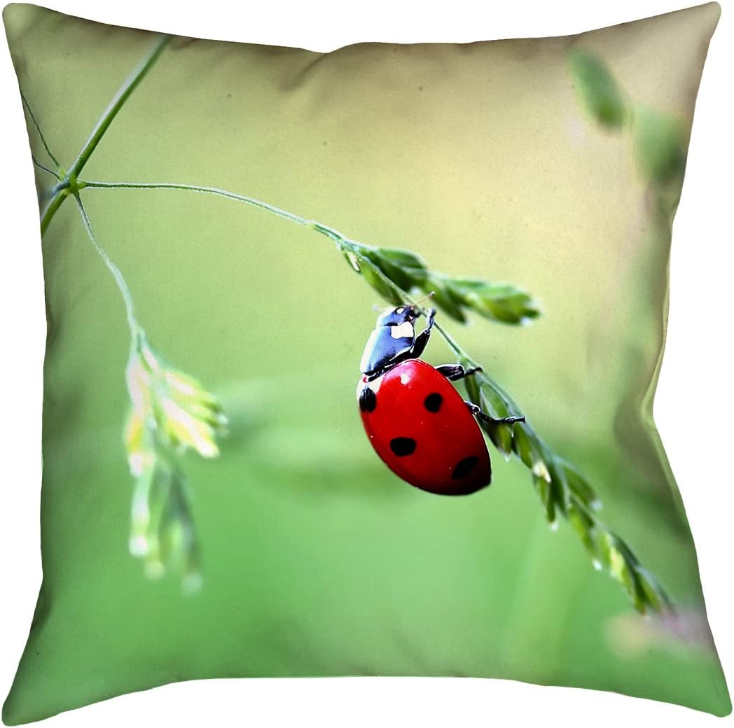 ArtVerse Myriam Smith Ladybug Pillow w Removable Insert – Spun Polyester, 20 x 20, Green