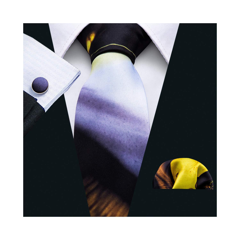 Barry.Wang Printed Silk Tie Set Hanky Cufflinks Party Neckties (Multi)