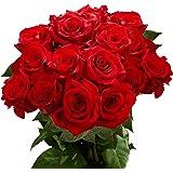 GlobalRose 50 Fresh Long Stem Red Roses